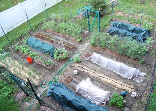GardenJuly13